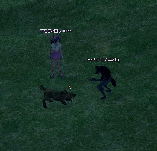 黒オオカミvs犬