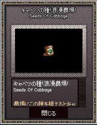 キャベツの種