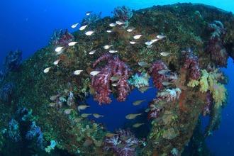 07魚礁ワイド