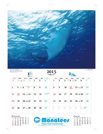 2015カレンダー(1-2月)