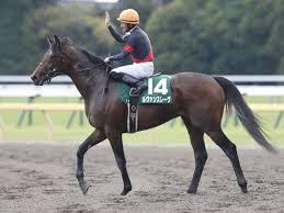 【ジャパンダートダービー2018】予想|2強に割り込むのは絶好枠を引いたこの馬!