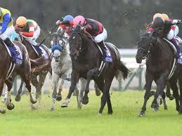 【マイルチャンピオンシップ2018】予想|一週前追い切りで絶好の動きを見せたのは人気薄のあの馬!