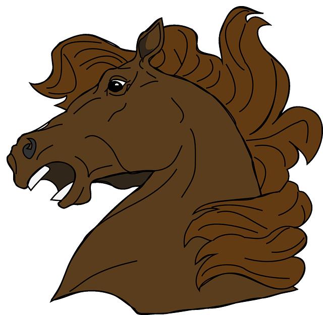 【競馬】JRAで12歳馬が出走した時の成績www