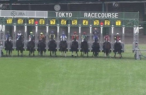 【なんJ競馬】天皇賞(秋)の展望