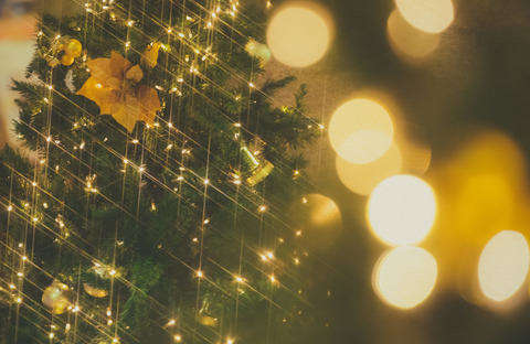 christmasIMGL9762_TP_V