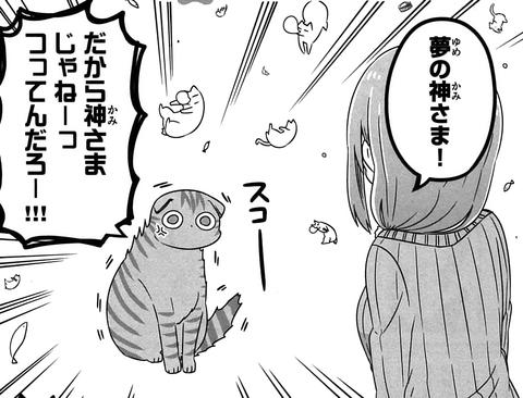 猫神じゃらし!_206