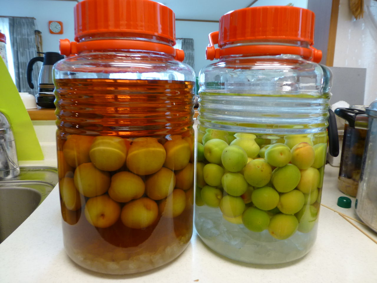 作りやすい「りんご」で酵素シロップの基本的な作 …