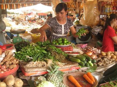 Vietnam 2010 078