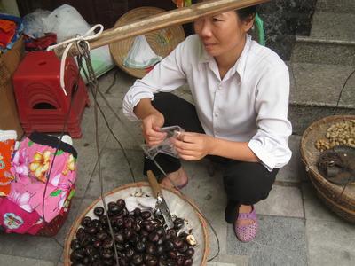 Vietnam 2010 090