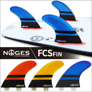 2017NOGES-3FIN-FCS-1