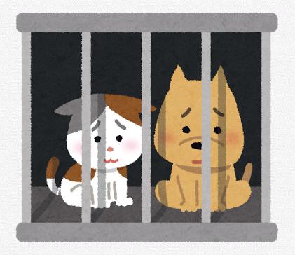 犬猫の寂しさ
