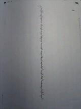 67a61716.jpg