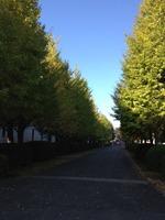 20121026funabashi