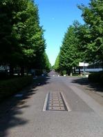 20120511funabashi
