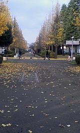 b134d987.jpg