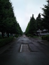 b8e573e4.jpg