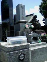 佐藤彦五郎墓