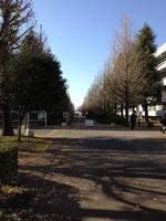 20121207funabashi
