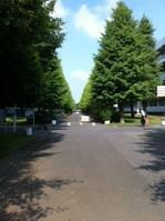 20120608funabashi