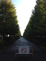 20121012funabashi