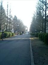 日本大学理工学部(2007年2月22日)