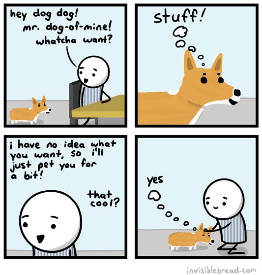 2014-03-13-dog-stuff
