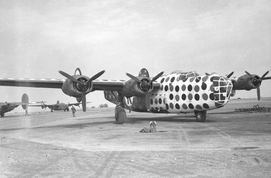 First_Sergeant_B-24D_Assembly_Ship_or_Judas_Goat