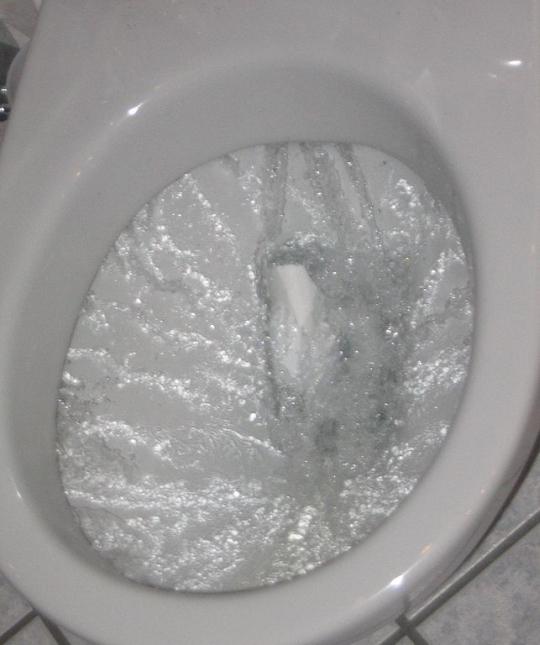 Flushing_toilet