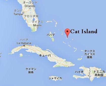 Cat Island1