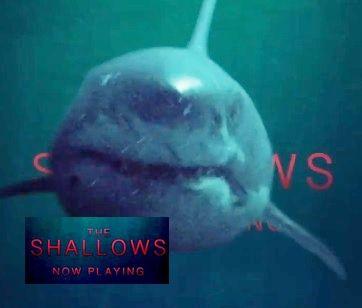 ロスト・バケーション(The Shallows)