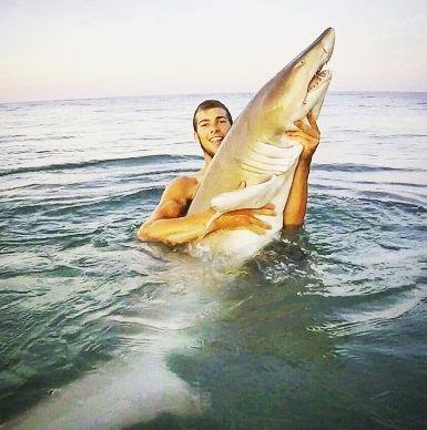 サメ アメリカ4