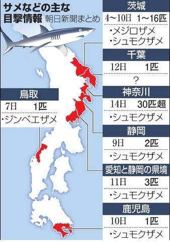 サメ目撃情報2015