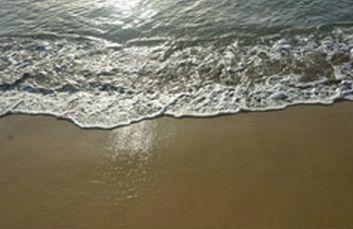ビーチ イメージ1