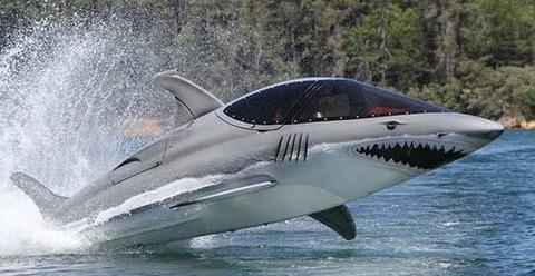 サメ ボート