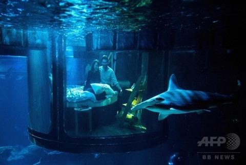 サメ パリ2