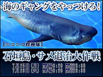 ニコニコ探検隊海のギャングをやっつけろ 石垣島・サメ退治大作戦