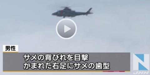 沖縄 サメ8