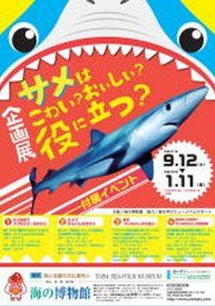 海の博物館 企画展