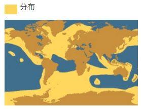 シャチの分布