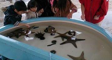 いおワールド かごしま水族館のFacebook