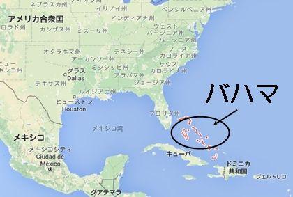 巨大シュモクザメが海岸に現れる...