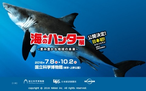 海のハンター展 新ポスター
