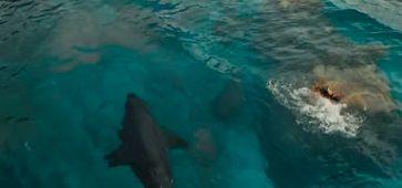 サメ 映画