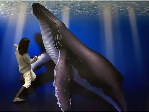 ザトウクジラのトリックアート 記念撮影コーナー