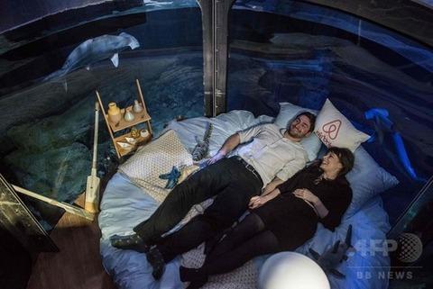 サメ パリ