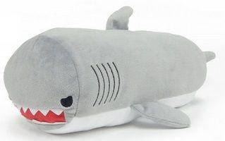 京都水族館 サメ1