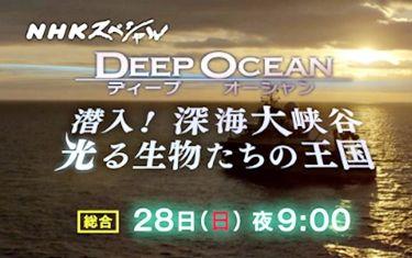 第1集 「潜入!深海大峡谷 光る生物たちの王国」