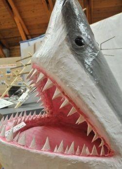 海の博物館で「サメ」展