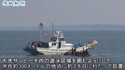 茨城 サメ