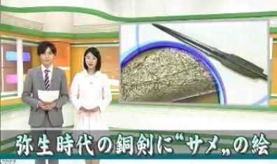 鳥取県立博物館が所蔵する弥生時代の銅剣に、サメの絵
